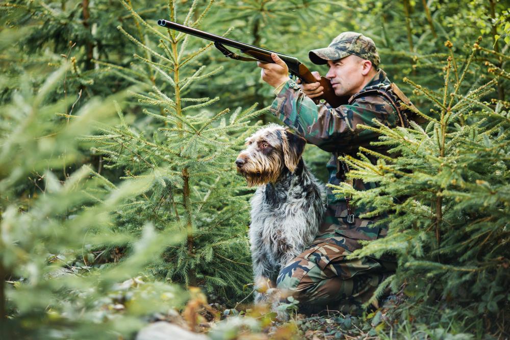 jagen im ausland