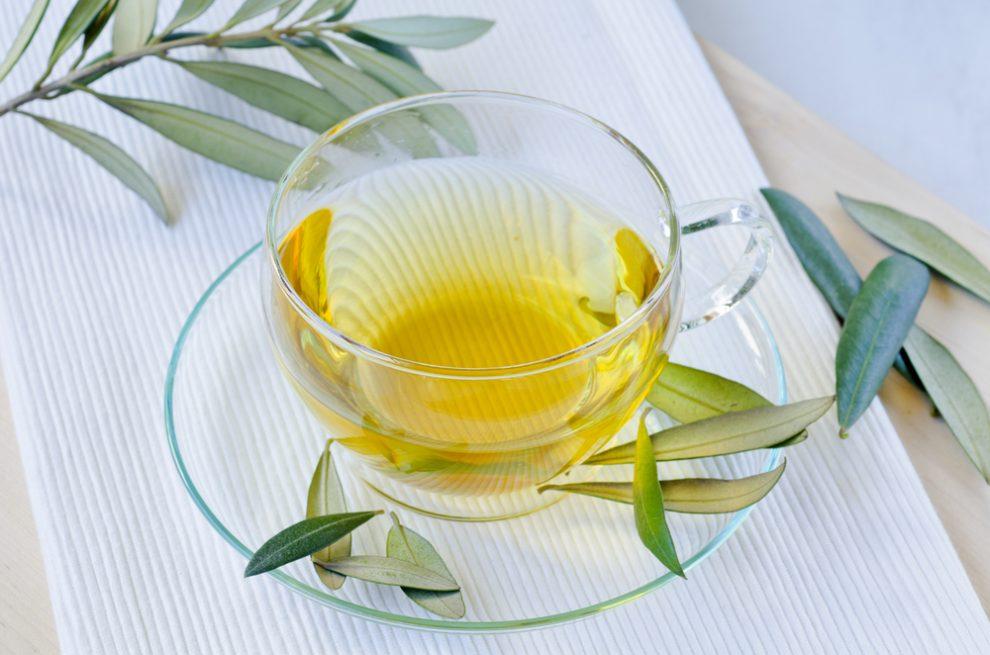 Olivenblättertee